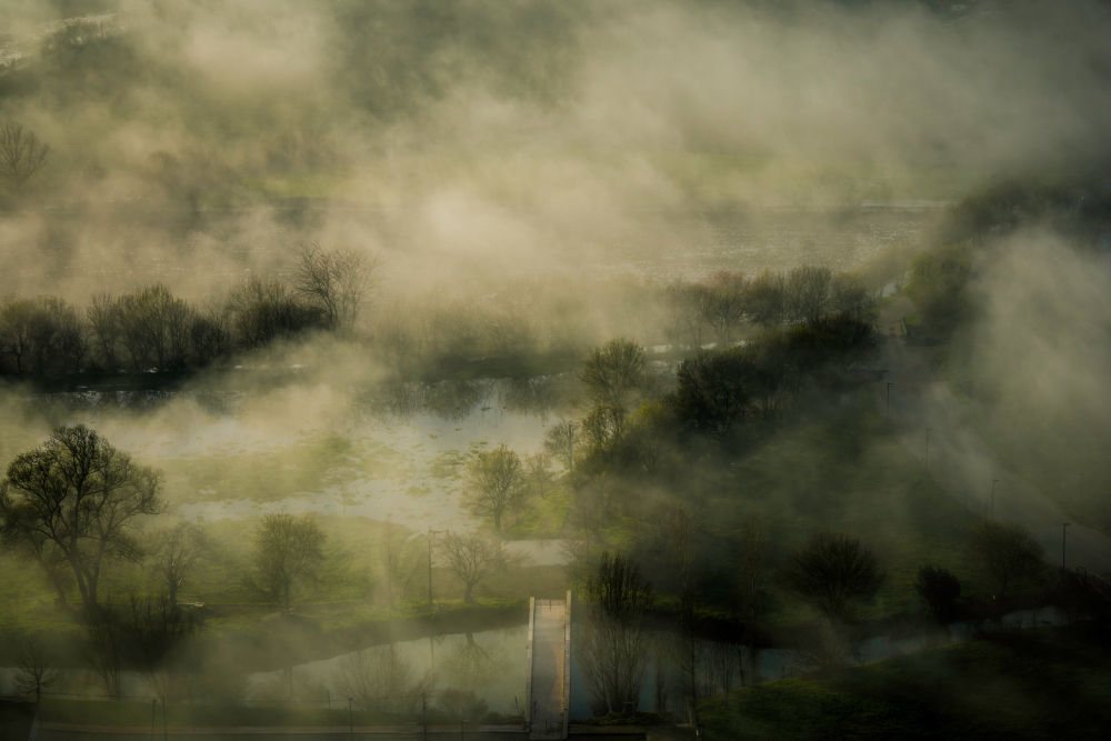 A misty view of forest with bridge